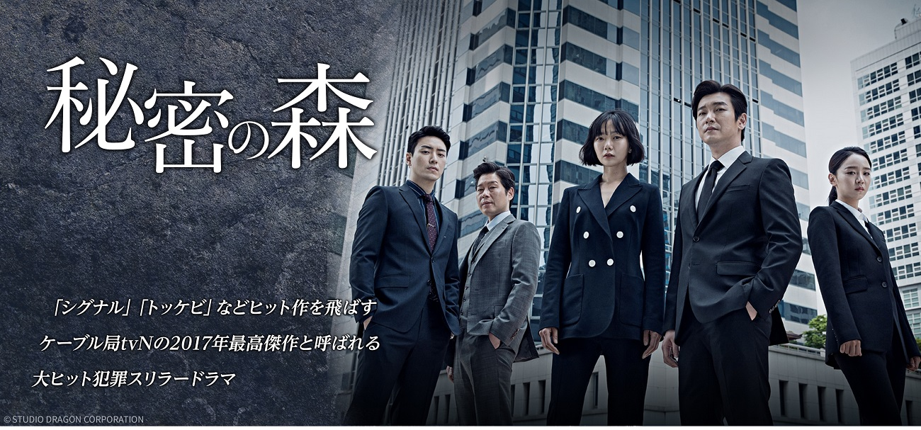 海外ドラマ『秘密の森』全16話